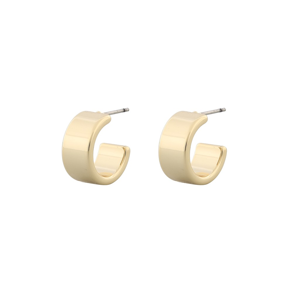 Carrie Small Ring Earring