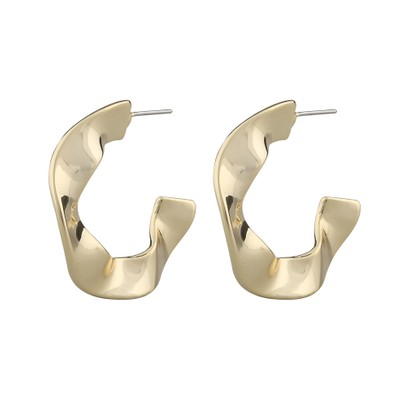 Phoebe Big Ring Earring