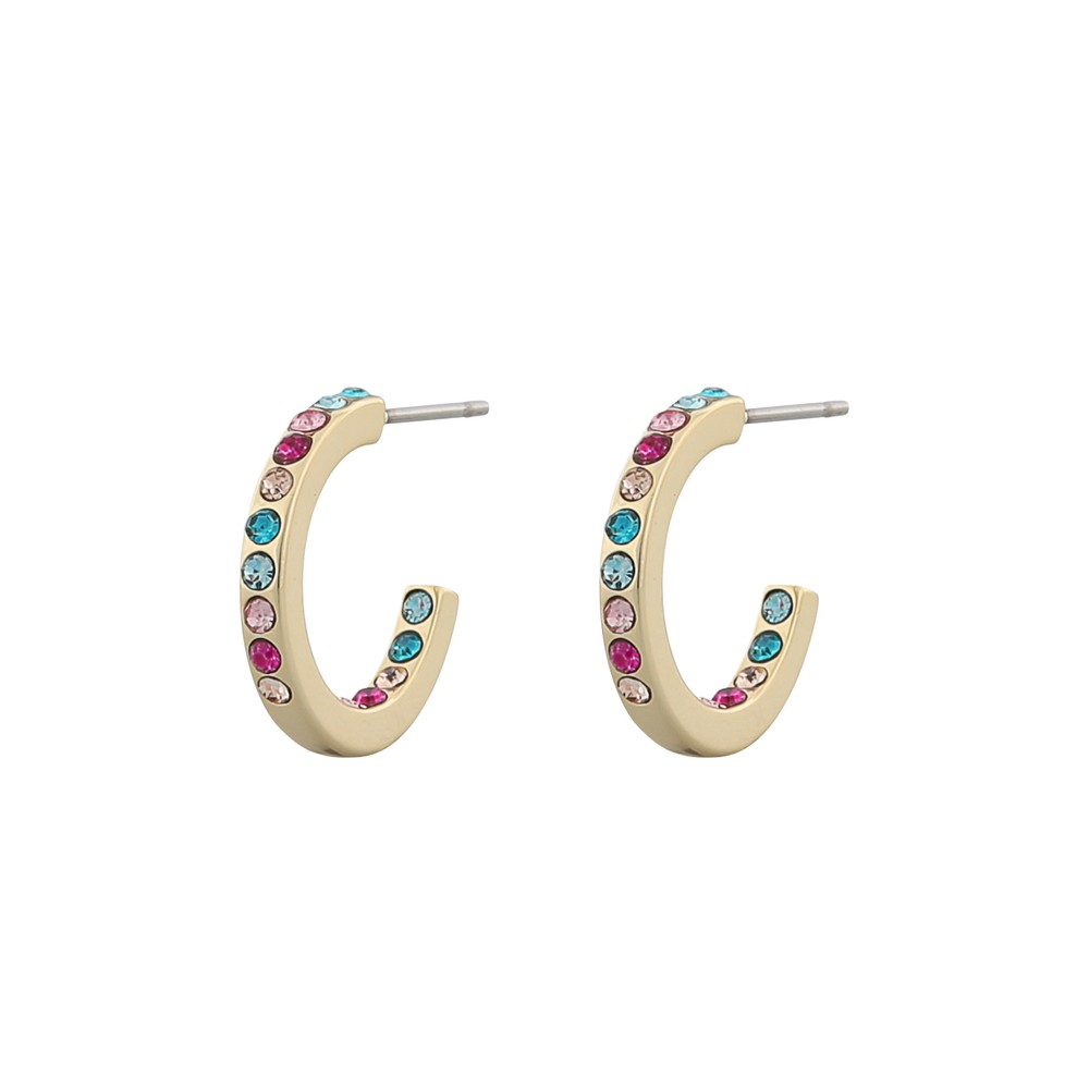 Stine Small Ring Earring